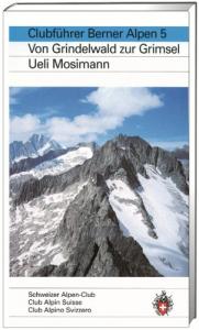 Berner Alpen 5