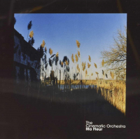 Ma fleur / The Cinematic Orchestra