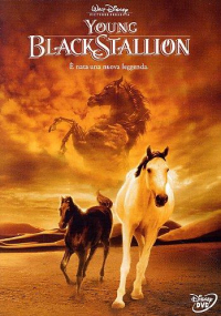 Young Black Stallion - DVD