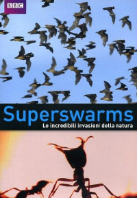 Superswarms