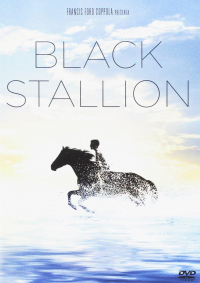 Black Stallion [DVD]