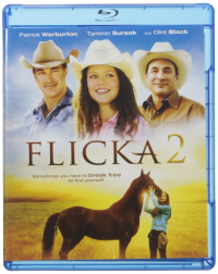Flicka 2 [VIDEOREGISTRAZIONE]