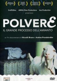 Polvere : il grande processo dell'amianto / un film documentario di Niccolò Bruna e Andrea Prandstraller ; musica originale Plus