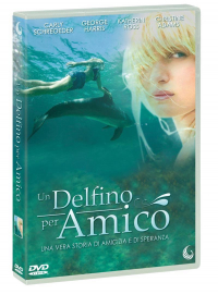 Un delfino per amico