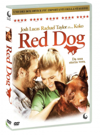 Red dog [VIDEOREGISTRAZIONE]