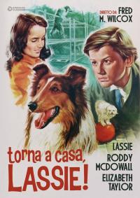 Torna a casa, Lassie! [VIDEOREGISTRAZIONE]