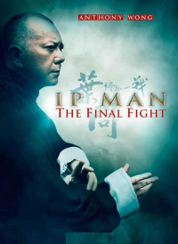Ip Man. The final fight