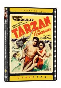 Tarzan e la sua compagna [VIDEOREGISTRAZIONE]