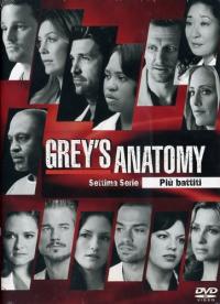 Grey's Anatomy. Settima serie