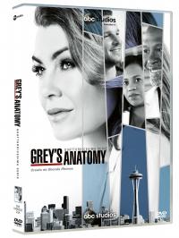 Grey's anatomy. Quattordicesima serie