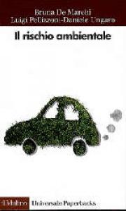Il rischio ambientale