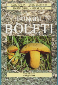 Funghi boleti