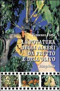 La  potatura degli alberi da frutto e dell'olivo