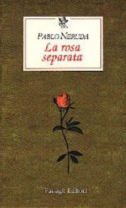 La rosa separata
