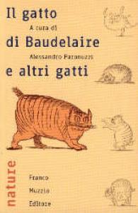 Il gatto di Baudelaire e altri gatti