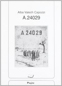 A 24029