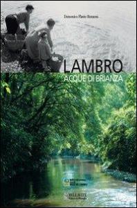 Lambro : acque di Brianza / Domenico Flavio Ronzoni ; con un contributo di Michele Mauri ; fotografie di Antonio Molteni