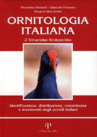 2: Tetraonidae - Scolopacidae
