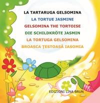 La tartaruga Gelsomina