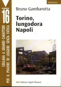 Torino, lungodora Napoli