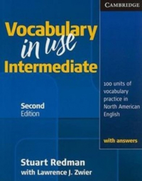 Vocabulary in Use: intermediate