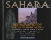Pinceladas de un desierto vivo desde la région del Tiris, en las tierras libres del Sahara occidental