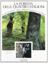 4: La foresta delle quattro stagioni