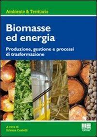 Biomasse ed energia