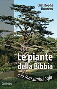 Le piante della Bibbia e la loro simbologia