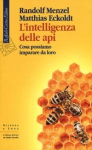 L'intelligenza delle api