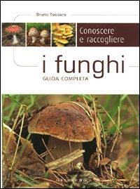 Conoscere e raccogliere i funghi