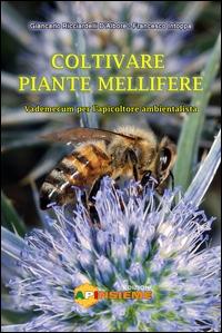 Coltivare piante mellifere