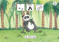 Il panda golosone