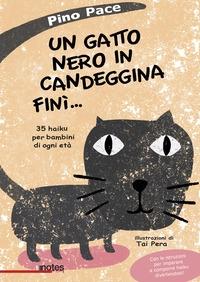 Un gatto nero in candeggina finì ...