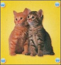 [I gattini]