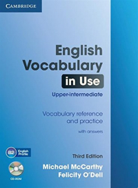 English vocabulary in use