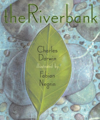 The riverbank / Charles Darwin ; illustrated by Fabian Negrin