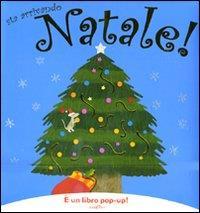 Sta arrivando Natale!