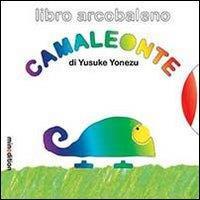 Libro arcobaleno