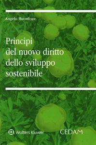 Principi del nuovo diritto dello sviluppo sostenibile