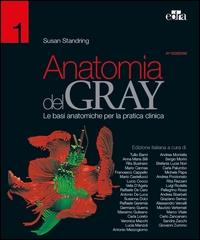 Anatomia del Gray : le basi anatomiche per la pratica clinica / [a cura di] Susan Standring. Vol. 1