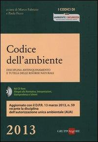 Codice dell'ambiente