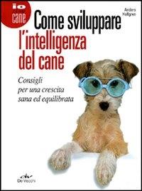 Come sviluppare l'intelligenza del cane