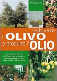 Coltivare l'olivo e produrre l'olio