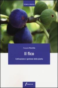 Fico. Coltivazione e gestione della pianta (Il)