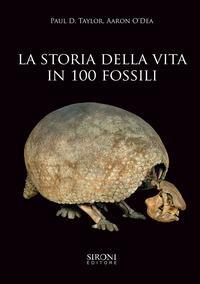 La storia della vita in 100 fossili