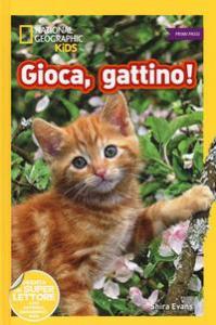 Gioca, gattino