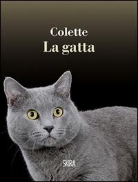 La gatta