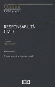 Vol. 2: Responsabilità contrattuale, responsabilità in ambito familiare, medico e nei rapporti con la pubblica amministrazione