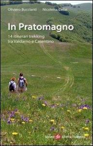 In Pratomagno